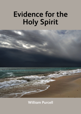Evidence for the Holy Spirit