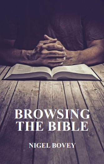 Book cover for Browsing the Bible